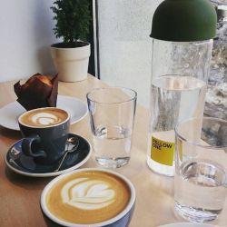 Fellow one - aroma de cafea si soare de iarna tarzie
